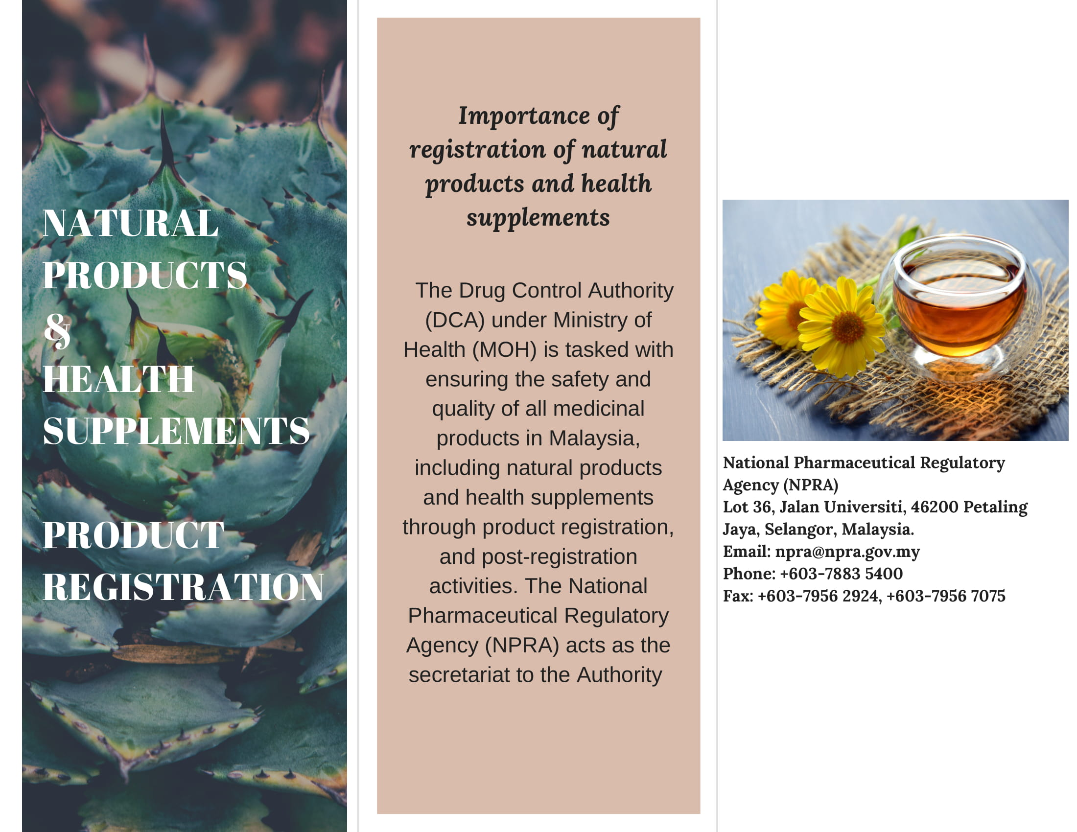 NATURAL PRODUCTS & HEALTH SUPPLEMENTS REGISTRATION